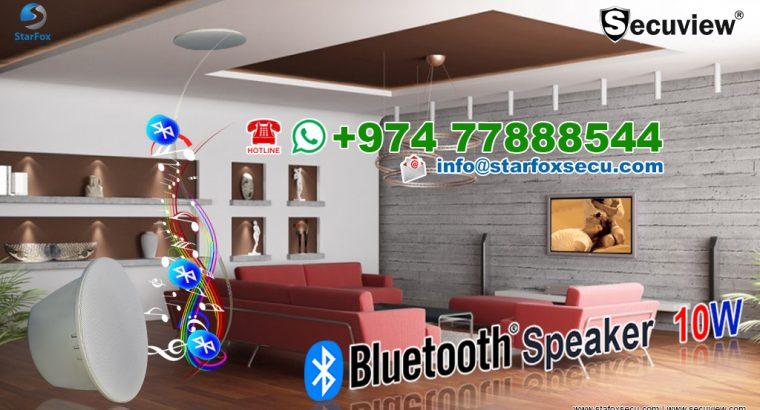 10W Blootooth Speaker