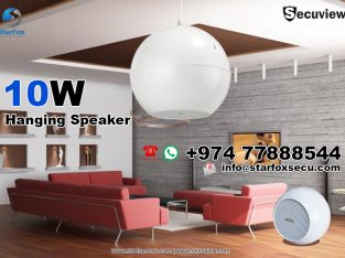 Hanging Speaker 10W