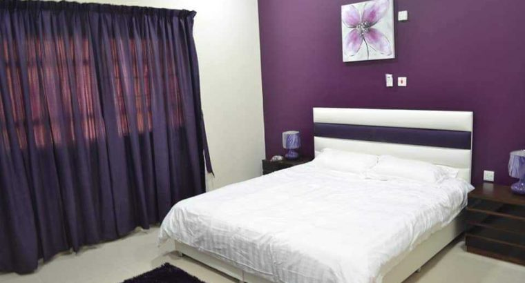 Super Furnished 1 BHK in Sakhama-FIRST MONTH FREE
