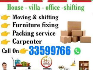 moves packers transportation company √